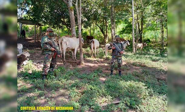 Foto Ejército de Nicaragua: Las personas retenidas fueron entregadas a la Policía Nacional del municipio de El Cuá para su judicialización.