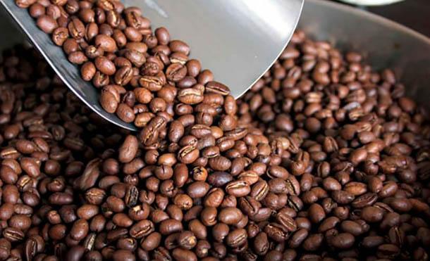 Foto Referencia // Se implementará el Plan de Atención a Pequeños Productores de Café