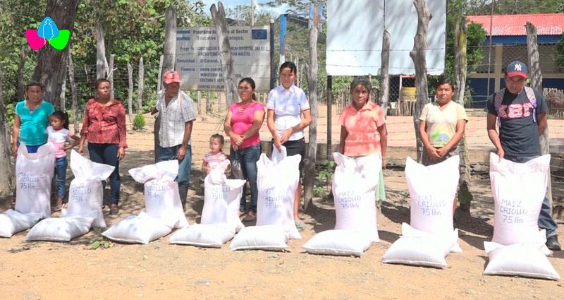 Familias agricultoras de Mozonte en Nueva Segovia reciben insumos agrícolas para sus siembras.