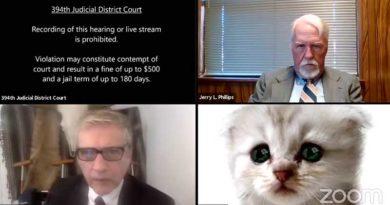 Captura de pantalla de audiencia virtual con filtro de gato