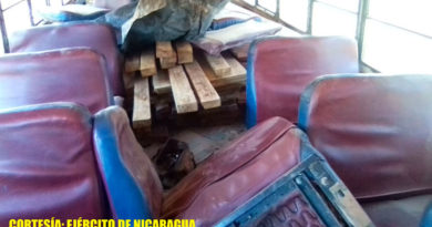 Madera ocupada por el Ejército de Nicaragua en el municipio de Siuna