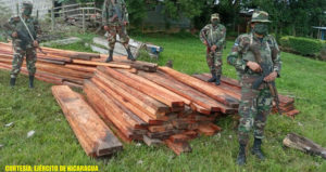 Efectivos militares del Ejercito de Nicaragua con la madera ocupada