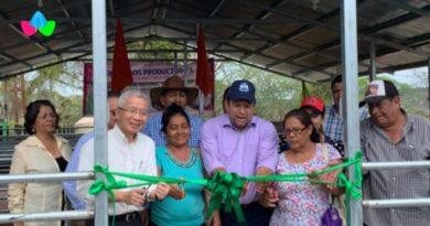 Productores, funcionarios del INTA y de la Embajada de Taiwán en Nicaragua, durante la inauguración en el Centro de Mejoramiento Genético de Muy Muy, Matagalpa.