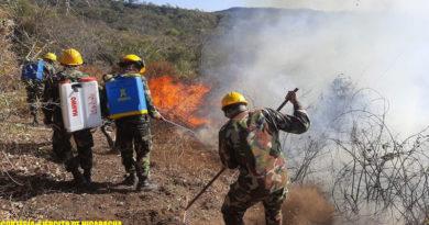 Efectivos militares del Ejército de Nicaragua sofocando incendio forestal en Masachapa