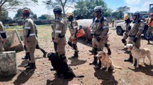 Unidad canina de los Bomberos Unificados de Nicaragua