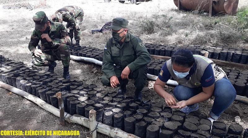 Efectivos militares del Ejército de Nicaragua en el recién inaugurado vivero forestal en el Segundo Batallón