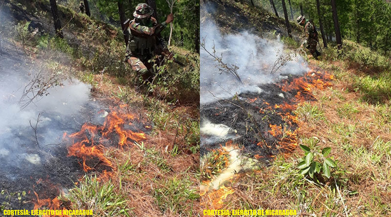Efectivos militares del Ejército de Nicaragua sofocando incendio forestal en comunidad El Limón, municipio de Jalapa, Nueva Segovia