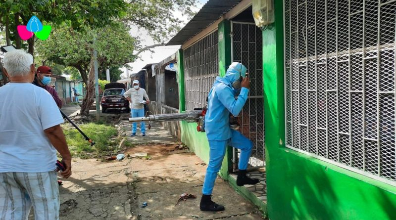 Brigadista del Ministerio de Salud entrando a una vivienda de Villa Libertad en Managua durante la jornada de lucha antiepidémica.