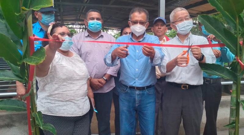 Señor Iván Lo, Ministro Consejero de la Embajada de Taiwán en Nicaragua junto a las autoridades de Nueva Guinea inaugurando granja porcina de mejoramiento genético
