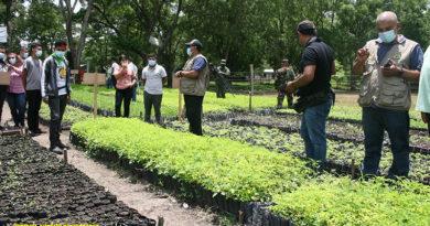 """Vivero forestal ubicado en las instalaciones del campamento militar """"Teniente Víctor Manuel Irías Montalván."""