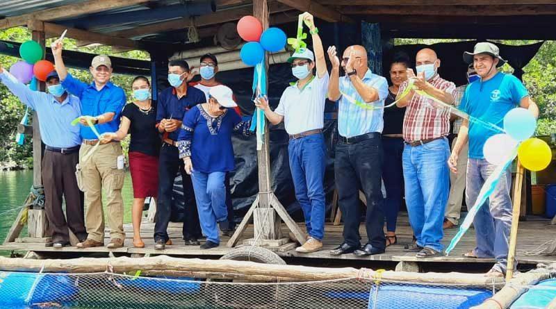 Protagonistas, el compañero Edward Jackson, Presidente Ejecutivo de INPESCA, el Señor Roberto Pang, Director de la cooperación técnica de China Taiwán en Nicaragua, así como autoridades locales durante la inauguración de jaulas flotantes de pargo lunarejo