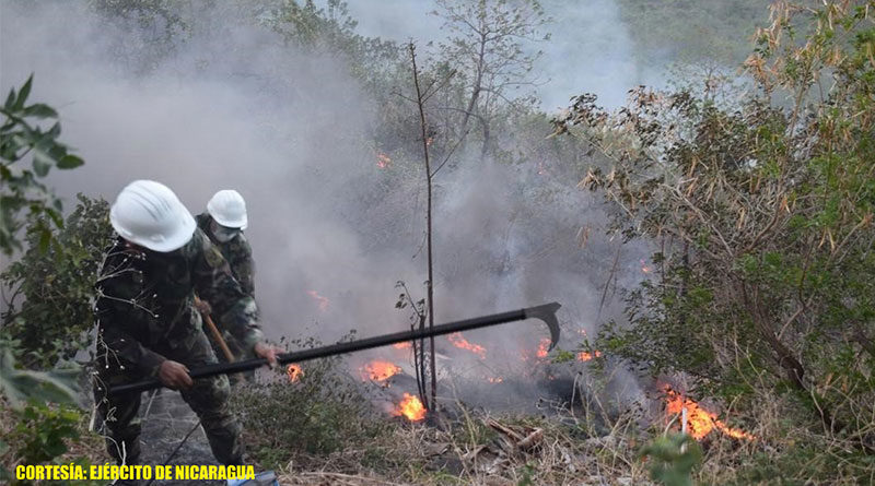 Efectivos militares del Ejército de Nicaragua trabajando en sofocación del incendio cerro Motastepe, ubicado en la comarca Nejapa, departamento de Managua.