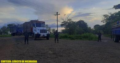 Ejército de Nicaragua ocupa 152 semovientes en Nueva Guinea y el Caribe Sur