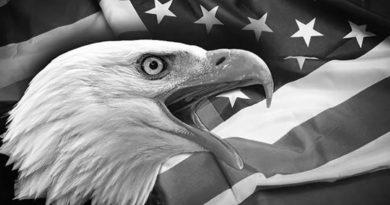 Águila con bandera de EEUU detrás