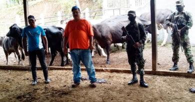 Efectivos militares del Ejército de Nicaragua entregando los semovientes a sus respectivos dueños.
