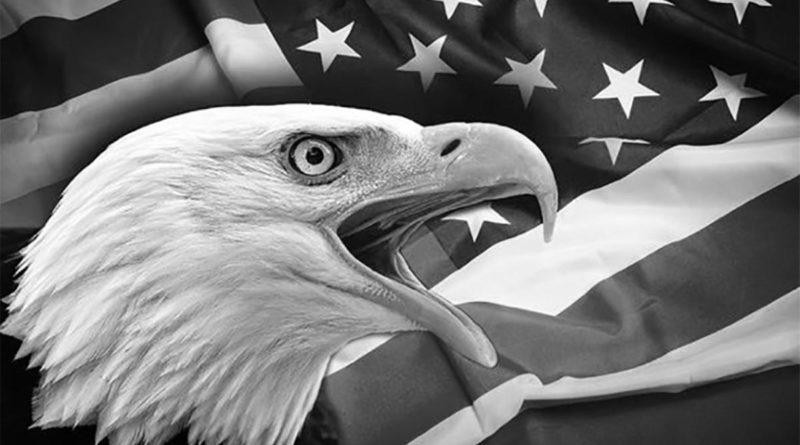 Águila sobre una bandera de Estados Unidos en blanco y negro