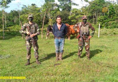 Ciudadano retenido vinculado al abigeato por miembros del Ejército de Nicaragua