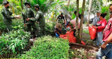 Efectivos militares del Ejército de Nicaragua entregando plantas forestales a productores y productoras de las comunidades aledañas al área protegida Parque Nacional Cerro Saslaya.