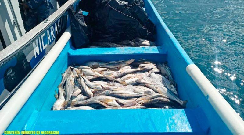 La tripulación de la embarcación no presentó documentación, emisión de zarpe, no portaban chalecos salvavidas y medios de seguridad de la vida humana en el mar, violentando las leyes establecidas en el país.