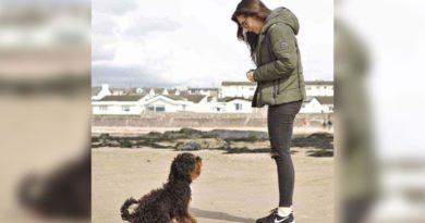 Una joven rescata a un perrito que fue arrojado de una furgoneta