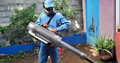 MINSA desarrolla jornada epidemiológica en barrio Tierra Prometida