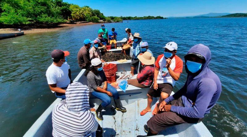 Ciudadanos llegando a la Isla La Vaca, en Padre Ramos para reforestar el mangle rojo